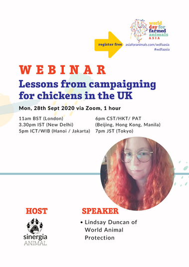 Lessons from campaigning for chickens in the UK