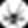 logo-arachnicorp hd copie.png