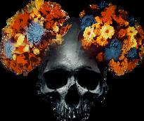 skully flower