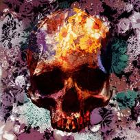Skull'N Roses