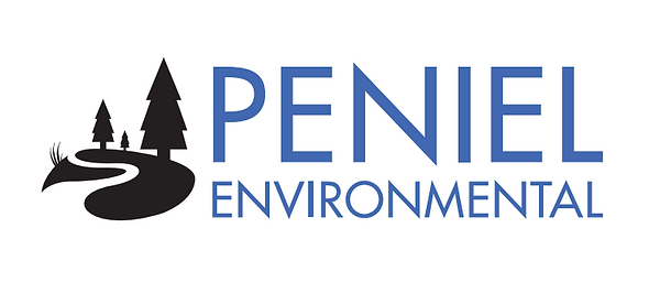 Peniel Logo New.PNG