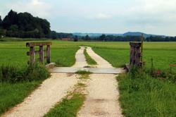 agriculture-barn-boardwalk-276460