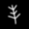 symbol 12.png