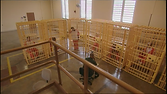 Thumbnail image that shows a line of 4 white cages that each hold a prisoner wearing an orange jumpsuit. A guard sits in a chair outside watching them.