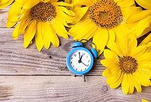 blue-alarm-clock-yellow-sunflowers-old-w