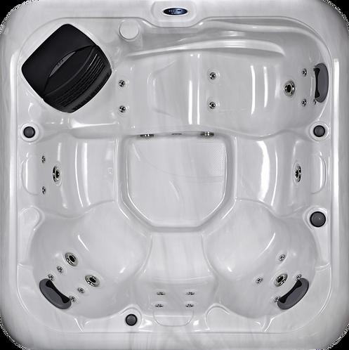 Platinum Spas Vienna Hot Tub