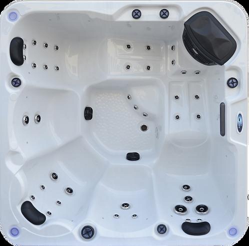 Platinum Spas Trident Hot Tub