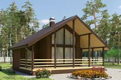 Каркасный дом (1)