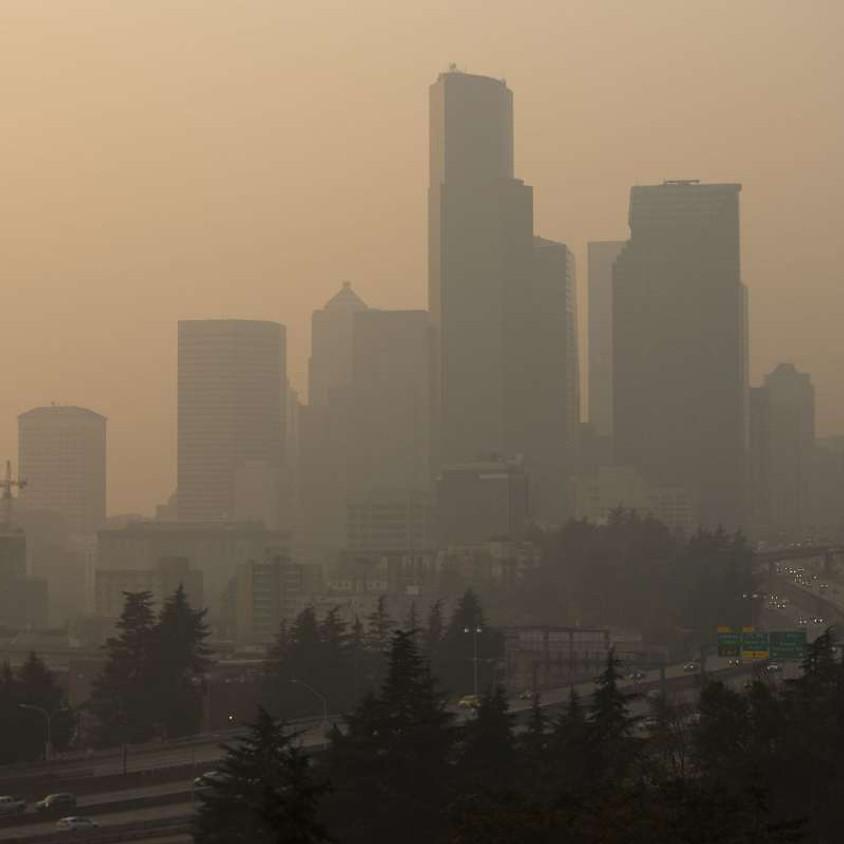 July Very Important Lunch Date: Washington Wildfire Season