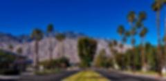 palm-springs-1587288_1920.jpg