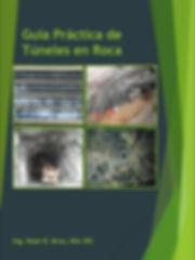 Cover de libro grafico.jpg