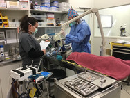 Positioning for dental radiographs