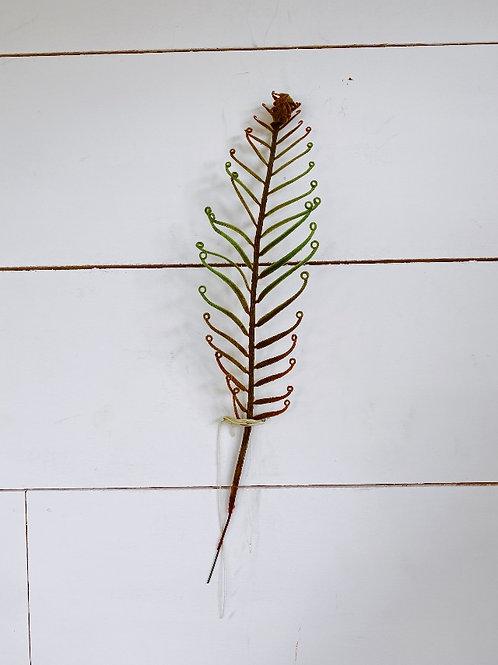 Curly-Q Fern Leaf Spray