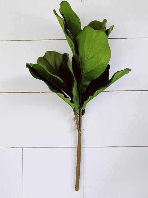 Baby magnolia Green leaf spray