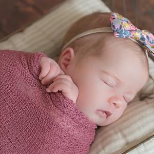 Kinsley - Newborn