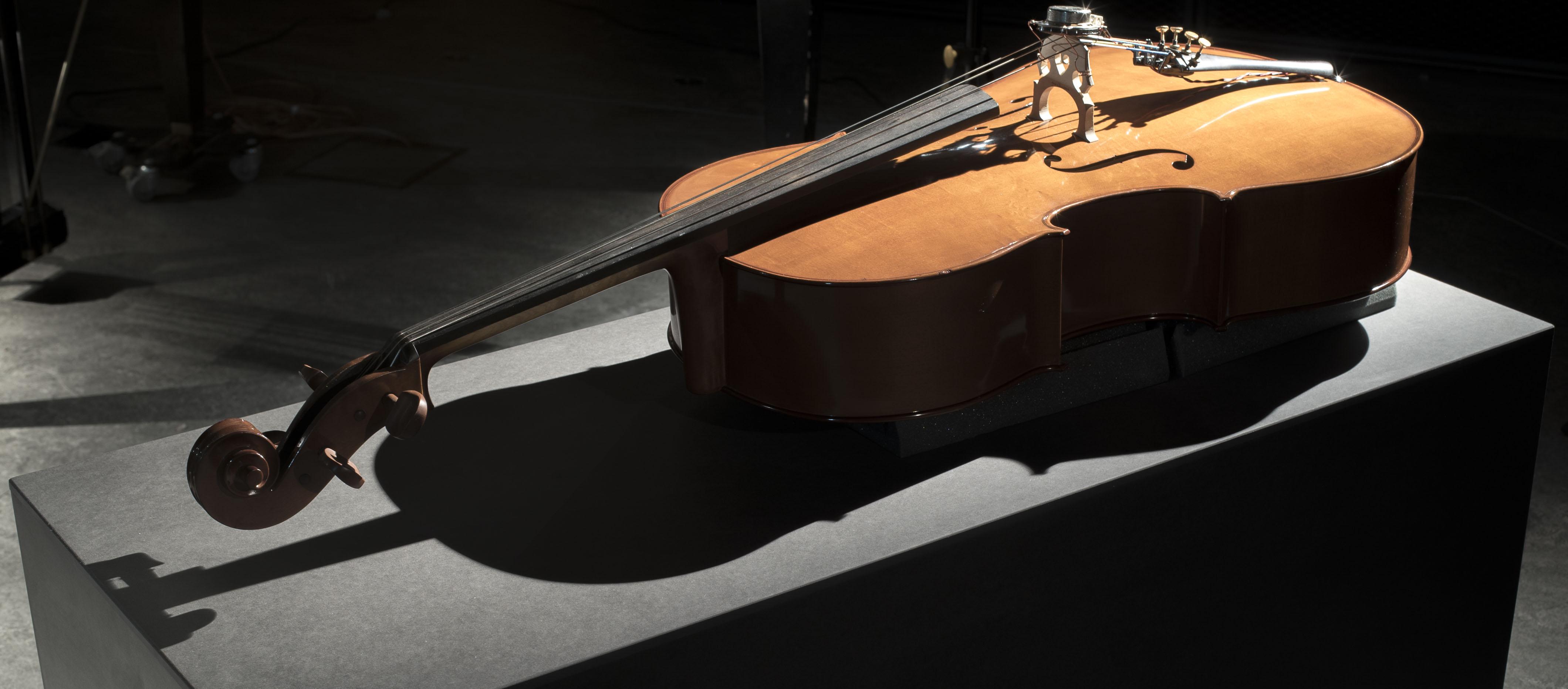 Vox-Nihili-Violoncello-Surrogate