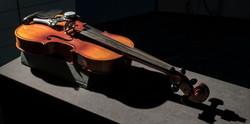 Vox-Nihili-Violin-Surrogate