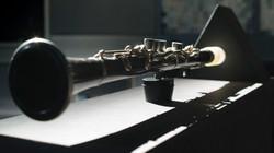 Vox-Nihili-Clarinet-Surrogate