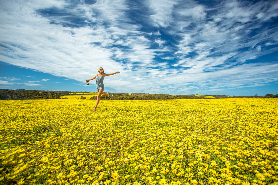 Top 5 Things To See In South Australia