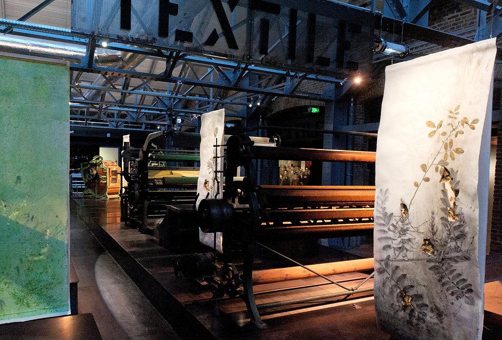 akira-inumaru-artiste-musée-elboeuf
