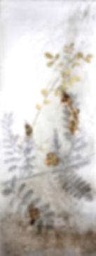 akira-inumaru-artiste-indigofera-tinctoria