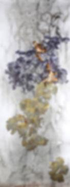 akira-inumaru-artiste-lobaria-pulmonaria