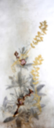 akira-inumaru-artiste-rubia-tinctorum