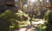 yanchep park