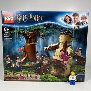 LEGO Harry Potter 75967 - REVIEW-  Der Verbotene Wald: Begegnung mit Umbridge