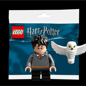 LEGO 30420 Polybag - Harry Potter & die fliegende Hedwig