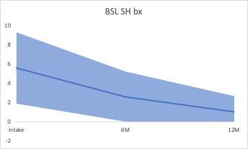 BSL-SHbx.jpg