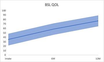 BSL-QOL.jpg