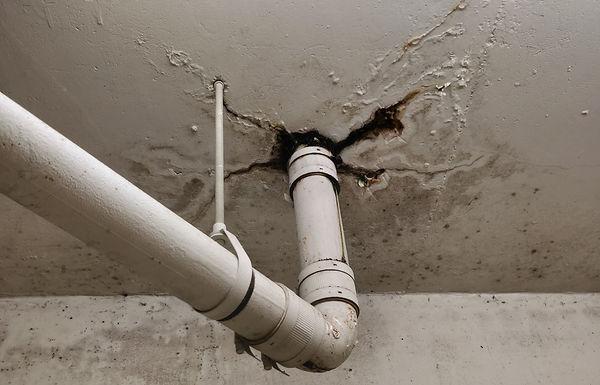 Vancouver Penthouse Leak From Concrete P