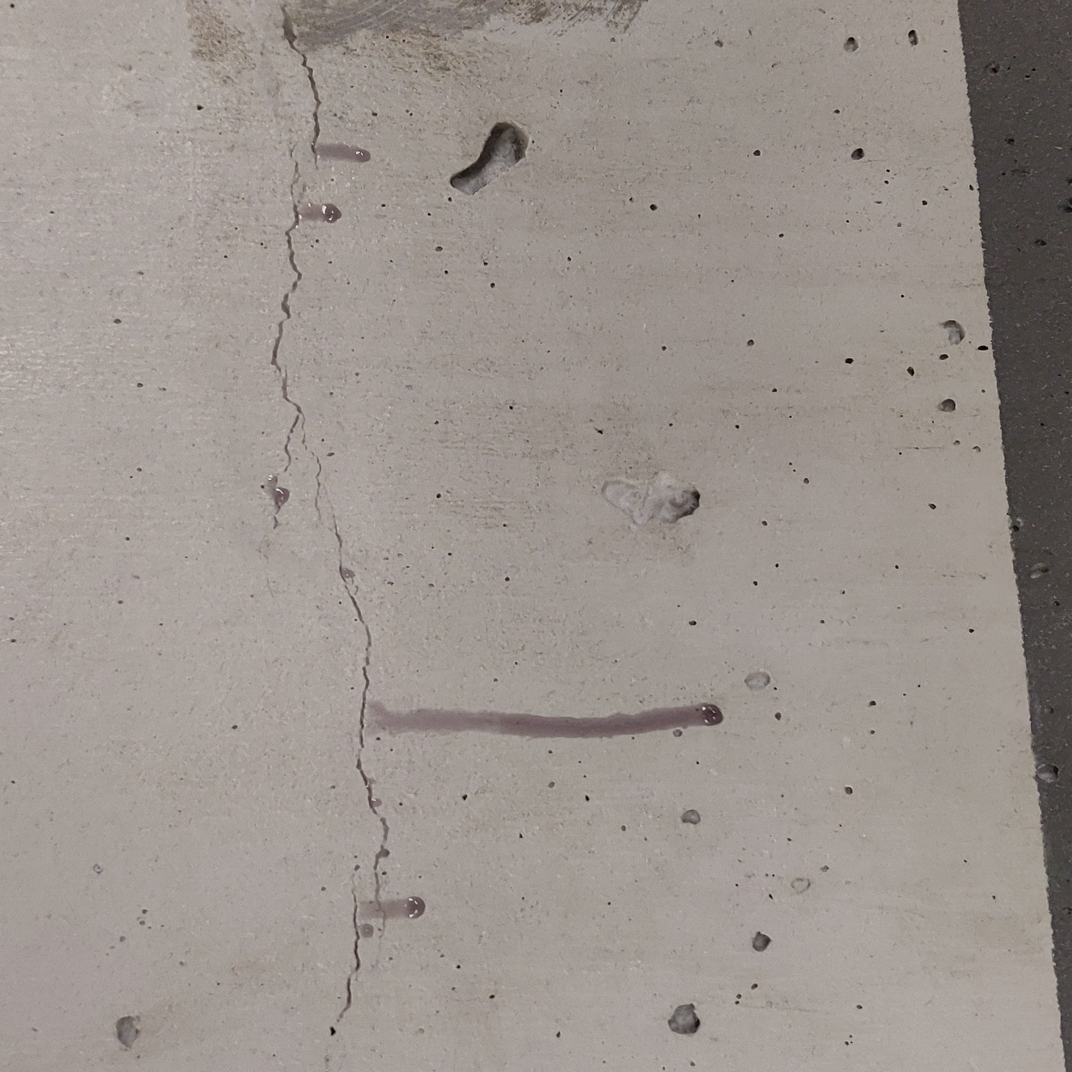Epoxy Resin Inside of a Crack during Rep