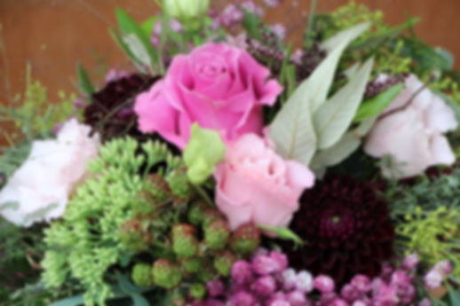 Floristik Susane Hänni Willkommen