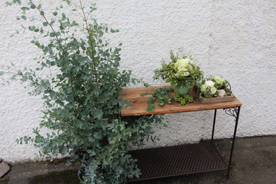 Bepflanzungen 6
