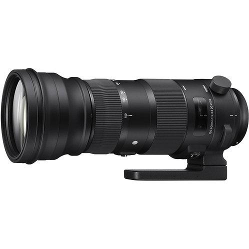 Sigma 150-600mm DG OS HSM tele lens/ 超級長鏡頭
