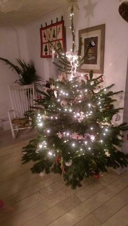 Customer Christmas Tree (After)
