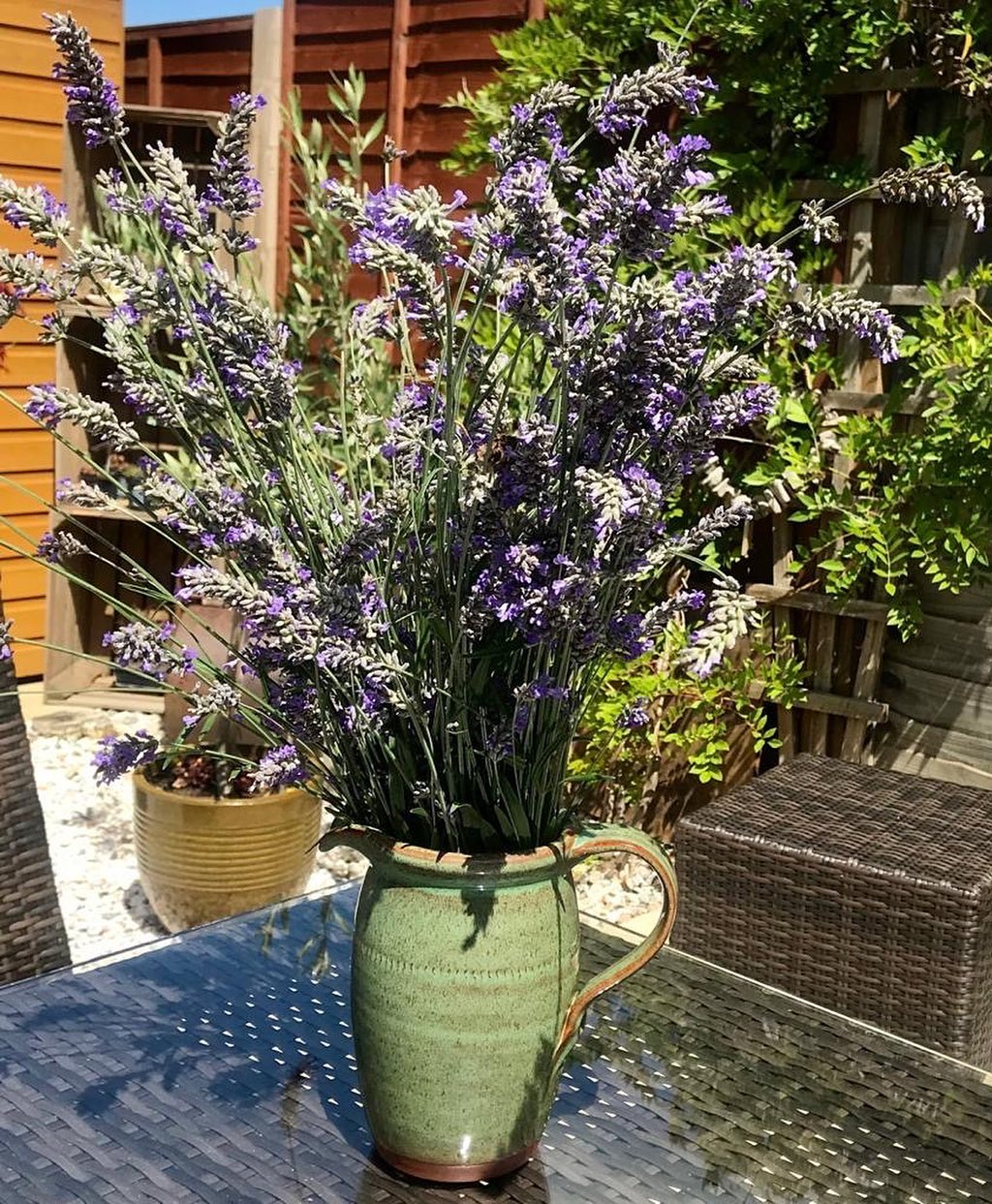 Fresh cut Lavender, smells divine