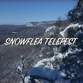 SnowfleaTile.png