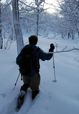 Algoma-backcountry-snowshoeing-Conor-Mih