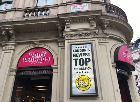 The medical body as spectacle: Body Worlds London