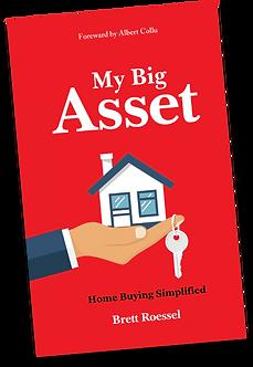My Big Asset eBook