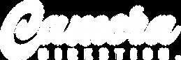 Freelance Live Multi-Camera Camera Director and Vision Mixer