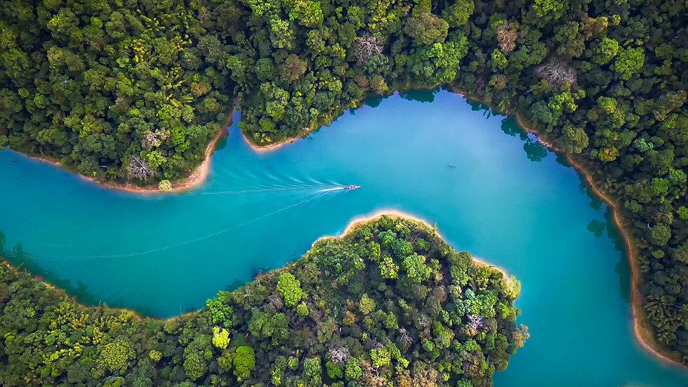 Yoga Nidra - River of Life