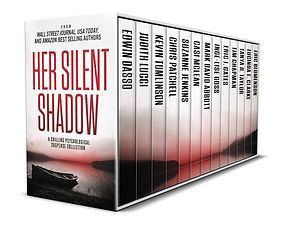 SilentShadow_3DNew.jpg