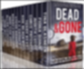 dead-and-gone-box-set_edited.png