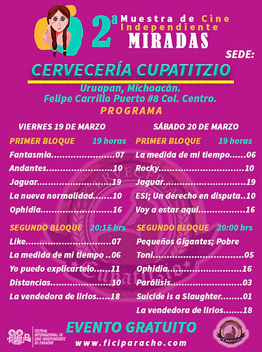 Programa MIRADAS Cupatitzio.jpg