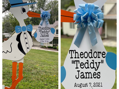 Baby Stork MD (240)863-2873 ~ Handmade Bows For Stork Announcements ~ Baltimore Maryland