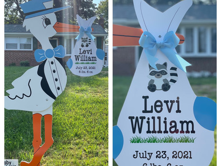 Baby Stork MD (240)863-2873 ~ Washington DC Stork Rental Service